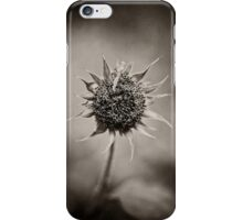 Beauty of Loneliness iPhone Case/Skin