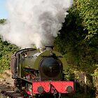 The saddle tank locomotive Walkden on the Ribble Steam Railway. by John Morris