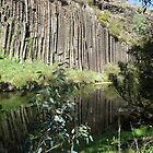 Organ Pipes by kalaryder