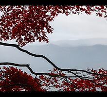 Rainy day at Hieizan by TTAN