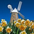 Spring Mill by Richard Murias