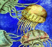 Jellyfish  by E. A. Porter