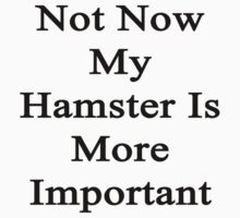 Not Now My Hamster Is More Important  by supernova23