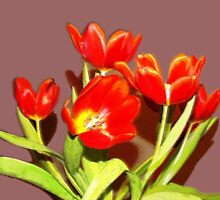RED TULIPS in vase  by OlaG