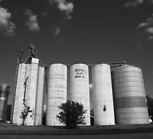 Illinois Grain Silos by Frank Romeo