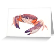 Florida Stone Crab Greeting Card