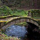 The Footbridge by Ellesscee
