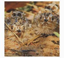 Sand Grouse Camouflage - Natural Beauty Kids Clothes
