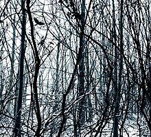 Ravelholm by Andrew Bret Wallis