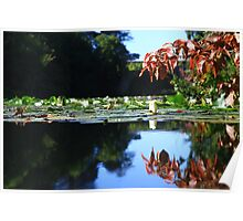 Stackpole Court -The One Arch Bridge. Poster