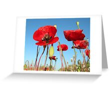 wild beauty Greeting Card