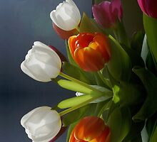 Mirrored Tulips by walstraasart