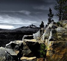 Mt. Washingtom ~ McKenzie Lava Beds ~ by Charles & Patricia   Harkins ~ Picture Oregon