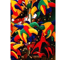Colourful Jester Hats  Photographic Print