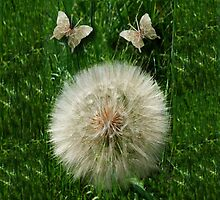 DANDILION PILLOW WITH DANDILION BUTTERFLIES MADE FROM THE DANDILION...PILLOW AND OR TOTE BAG by ╰⊰✿ℒᵒᶹᵉ Bonita✿⊱╮ Lalonde✿⊱╮