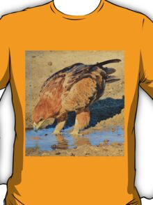 Tawny Eagle - Curious Life and Funny Nature T-Shirt