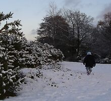 New Forest in the snow by JeremyAnson