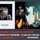 Exhibition Elf & Karo Evans à St Coulomb by Karo / Caroline Evans (Caux-Evans)
