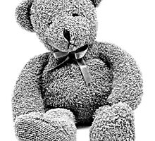 Cuddly Teddy Bear. Vintage Teddy Bear. Antique Teddy Bear. Teddy Bear Engraving. by digitaleclectic