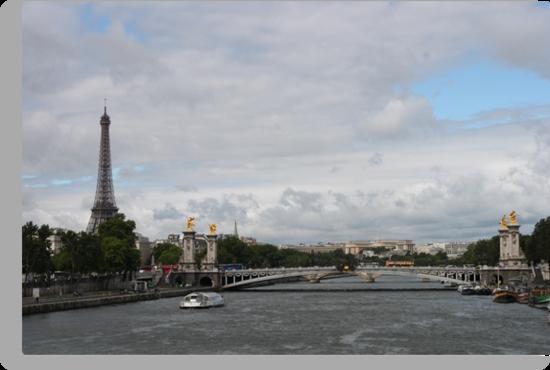 Paris Scyline by Elena Skvortsova