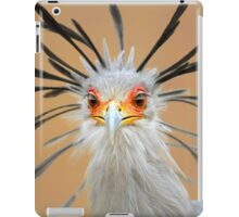 Secretary bird portrait close-up iPad Case/Skin