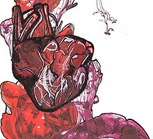 Pen study of anatomical heart on card stock  by Ellen Constable