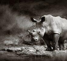 White Rhinoceros by johanswanepoel