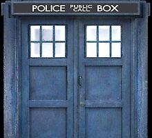 TARDIS by Aaron Svoboda