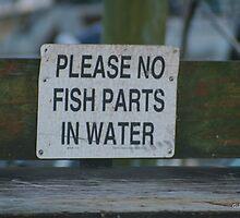 Please No Fish Parts In Water by Gilda Axelrod