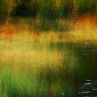 Artscape Convent Lake by Imi Koetz