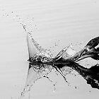 Grey Heron by Paul Spear