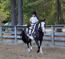 Deer Run Horse Show Club Sept. 20, 2014 (1) by DLitefulImagery