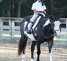 Deer Run Horse Show Club Sept. 20, 2014 (3) by DLitefulImagery