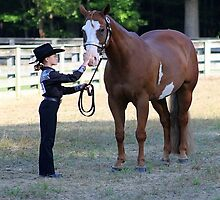 Deer Run Horse Show Club Sept. 20, 2014 (41) by DLitefulImagery