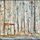 weathered door by Roxane Bay
