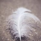 Like a Feather on the Wind by Trish Mistric