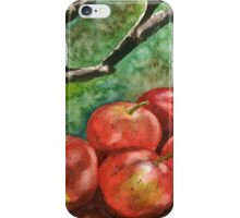 A Sign of Autumn iPhone Case/Skin