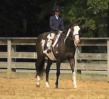 Deer Run Horse Show Club Sept. 20, 2014 (194) by DLitefulImagery