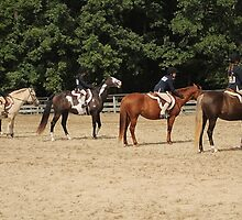 Deer Run Horse Show Club Sept. 20, 2014 (196) by DLitefulImagery