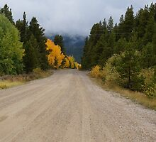 Country Roads by jcooklin