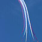 Parasol Break - The Red Arrows Farnborough 2014 by Colin J Williams Photography