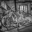 Parking Lot of Bicycles by Tom Piorkowski