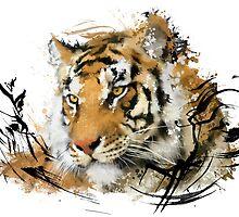 Distant Tiger by Victor Castillo