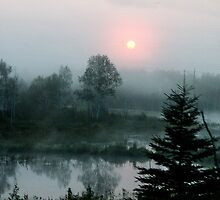Early Morning Mist by Marylou Badeaux