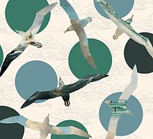 Seagull Polka by Paula Belle Flores