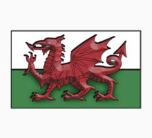 WELSH FLAG; FLAG OF WALES, RED DRAGON Kids Clothes