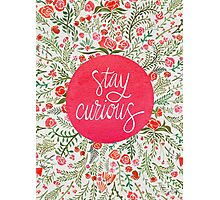 Stay Curious – Pink & Green Photographic Print