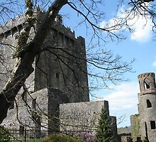 Blarney Castle 1 by mbgordon