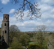 Blarney Castle View by mbgordon