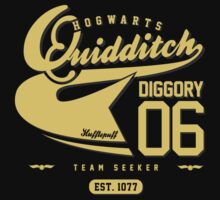 Cedric Diggory - Quidditch T-shirt (Dirty Version) by soulthrow